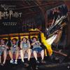 45419 - Unmoderated rollercoaster, lol, funny roller coaster picst - 1